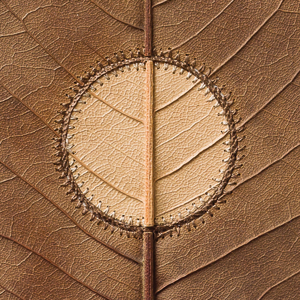 Inner-Circledetailphoto_art-photographers.co_.uk_