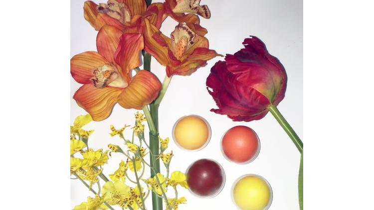 X-rite-Flowers-Dyed-Eggs-72dpi